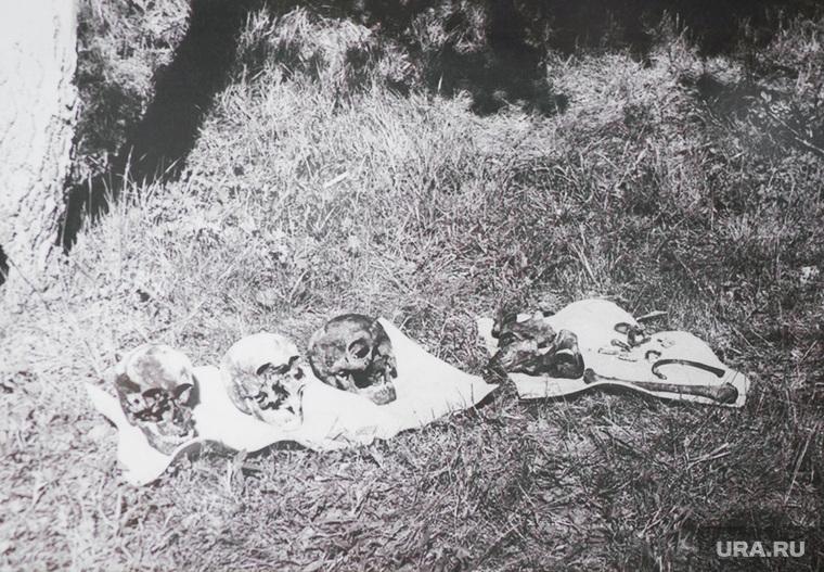 фото соответствует останки царской семьи романовых фото осуществляется баллонов, выдох